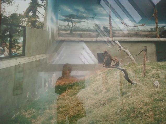 Mon reflet dans l exposition 2010.
