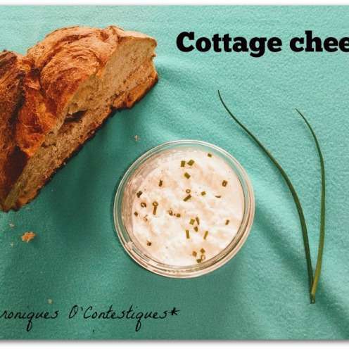 Cottage cheese03